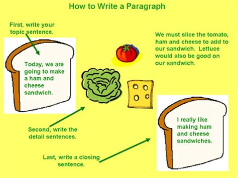 Alpha Student How to start an essay: the opening sentence